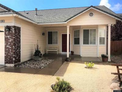 Washoe County Single Family Home For Sale: 3280 Sky Country