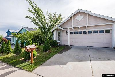 Washoe County Single Family Home For Sale: 5120 Greystone Dr