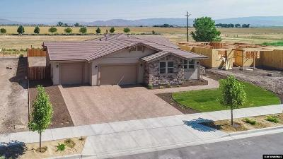 Minden NV Single Family Home For Sale: $546,000