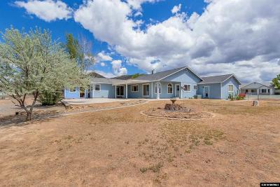 Minden NV Single Family Home For Sale: $499,000