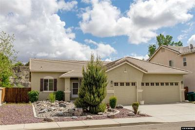Washoe County Single Family Home New: 202 River Front Dr
