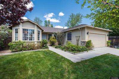 Washoe County Single Family Home New: 2695 Magnum Circle