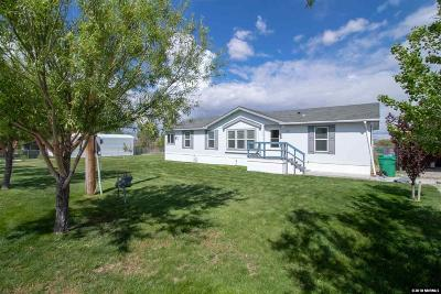 Washoe County Single Family Home New: 260 Kennedy Dr.
