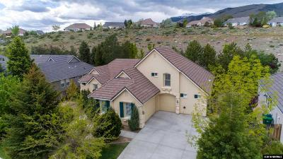 Reno Single Family Home New: 3354 Forest View Lane