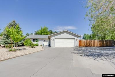 Washoe County Single Family Home For Sale: 125 Tequilla