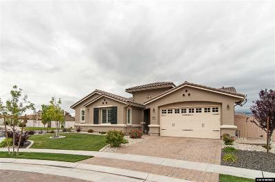 Washoe County Single Family Home New: 9899 Kerrydale Court