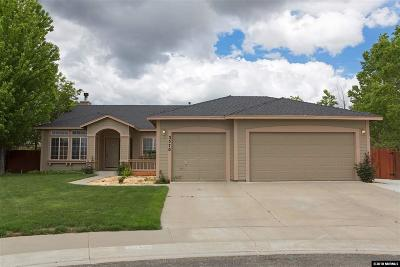 Carson City Single Family Home New: 3570 Overlook Ct