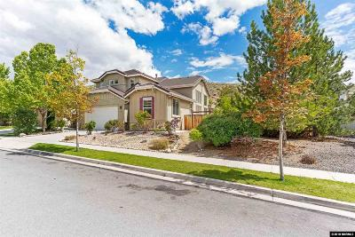 Washoe County Single Family Home New: 2909 Astronomer Way