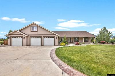 Gardnerville Single Family Home Active/Pending-Loan: 1126 Jo Lane
