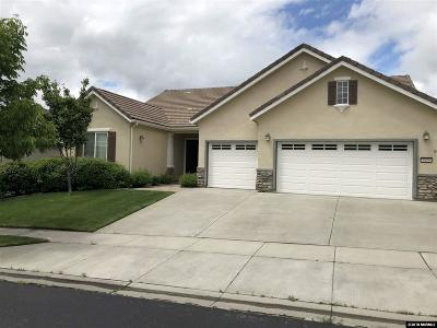 Washoe County Single Family Home For Sale: 1635 Ashland Bluff Way