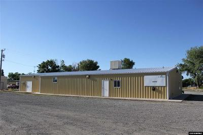 Yerington NV Commercial For Sale: $265,000