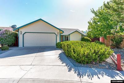 Carson City Single Family Home For Sale: 961 Sunview Ct.