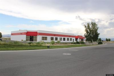 Minden NV Commercial For Sale: $2,600,000