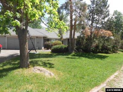 Gardnerville Single Family Home For Sale: 1191 Centerville