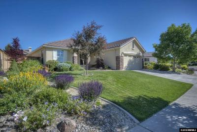 Washoe County Single Family Home For Sale: 1100 Meridian Ranch Dr.