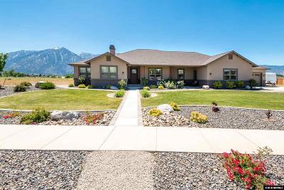 Gardnerville Single Family Home Active/Pending-Call: 1147 Kingston Ln