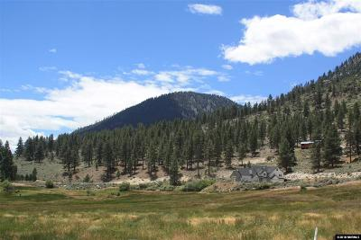 Gardnerville Residential Lots & Land For Sale: 565 Jackson Ranch Rd.
