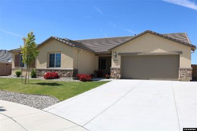 Washoe County Single Family Home For Sale: 3660 Gravity