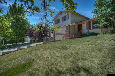 Carson City Single Family Home New: 812 Terrace Street
