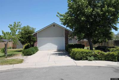 Reno, Sparks, Carson City, Gardnerville Single Family Home New: 701 Joette