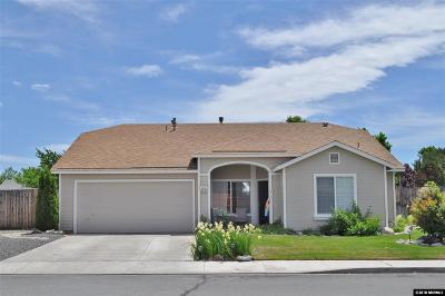 Washoe County Single Family Home For Sale: 7377 Sansol Drive