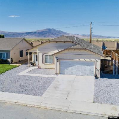 Fernley Single Family Home For Sale: 195 Desert Springs Lane
