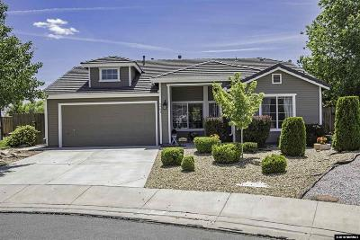 Washoe County Single Family Home New: 6404 Adobe Springs Ct