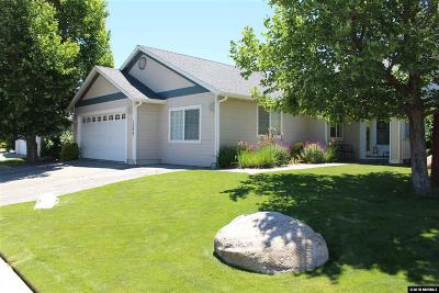 Gardnerville Single Family Home New: 1293 Chichester Drive