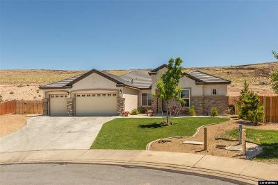 Washoe County Single Family Home New: 4768 Cobra Ct.
