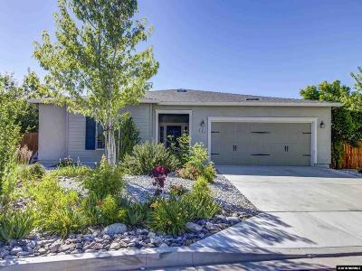 Washoe County Single Family Home New: 5520 Desert Dreams Dr