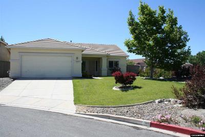 Reno Single Family Home New: 10535 Vista Alta Dr
