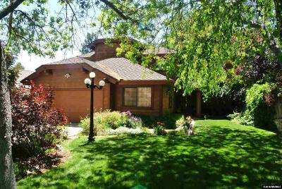 Reno Single Family Home New: 4040 Riverhaven Drive