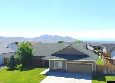 Carson City Single Family Home For Sale: 928 Ranchview Circle