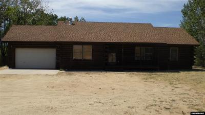 Gardnerville Single Family Home For Sale: 884 Selkirk Circle