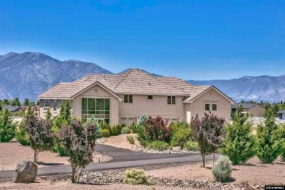 Gardnerville Single Family Home For Sale: 1162 Jo Lane