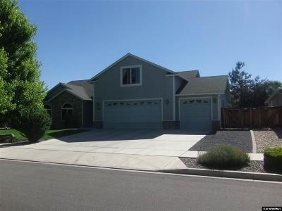 Gardnerville Single Family Home For Sale: 1369 Bryan Lane