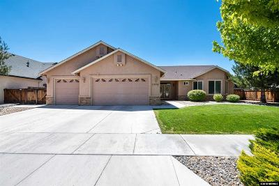 Gardnerville Single Family Home For Sale: 1370 Branden Lane