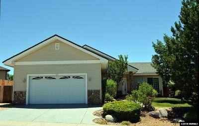 Carson City Single Family Home For Sale: 1027 Haystack Drive