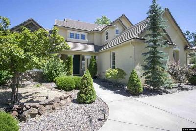 Washoe County Single Family Home For Sale: 3480 Forest View