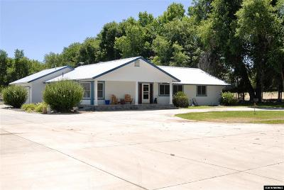 Fernley Single Family Home For Sale: 3135 Farm District Road