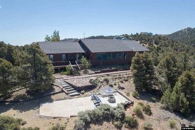 Reno Single Family Home For Sale: 21270 Fey Rd