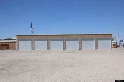 Fallon NV Commercial For Sale: $450,000