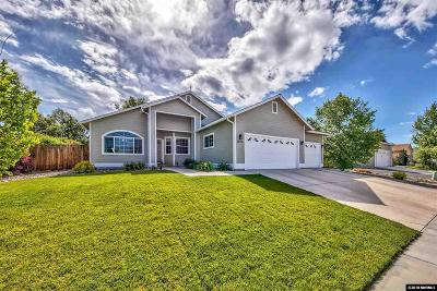 Gardnerville Single Family Home For Sale: 1443 Cardiff Drive