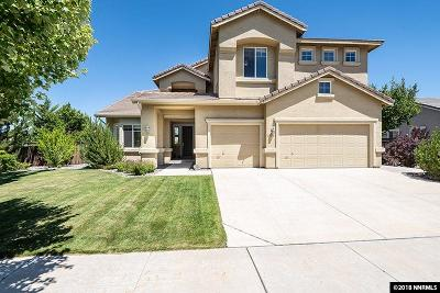 Washoe County Single Family Home For Sale: 2888 Silverton