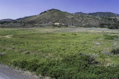 Reno Residential Lots & Land For Sale: 7565 S Virginia Street