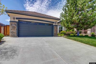 Washoe County Single Family Home For Sale: 1255 Cliff Park Way #--------