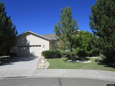 Carson City Single Family Home For Sale: 961 Desert