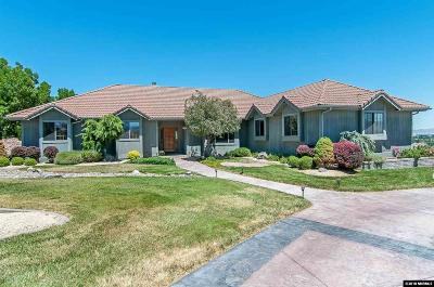 Washoe County Single Family Home For Sale: 245 Brunswick Mill Road