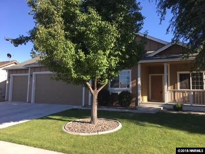 Fernley Single Family Home New: 1095 Aster Lane