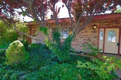 Gardnerville Single Family Home New: 1069 East Valley